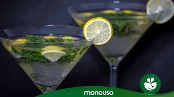 I migliori bicchieri di plastica per Martini